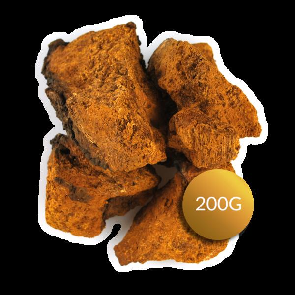 Wilder Chaga Pilz aus Sibirien 200g